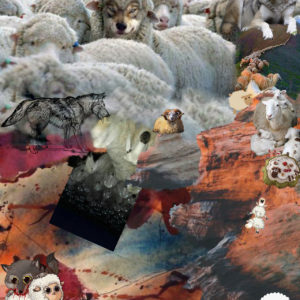 Sheeps who did not jump off the cliff