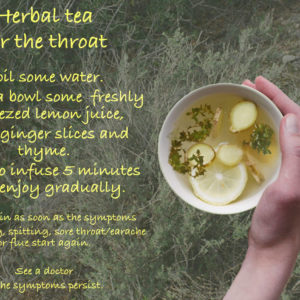 Herbal Tea for the throat