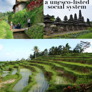 Bali, a traditional democracy, a unesco-listed social system