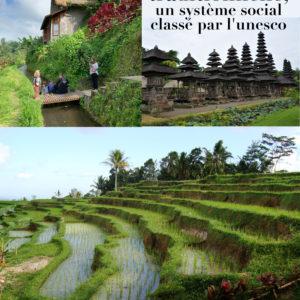 Bali, une démocratie traditionnelle, un système social classé par l'unesco